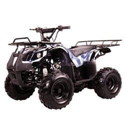 Gas ATV for Kids: //www.kidsatvsale.com/wp-content/uploads/125cc-Four-Wheelers-7in-Tires-ATVs.jpg||//www.amazon.com/gp/product/B00306FOH0/?tag=kidsatvs-20