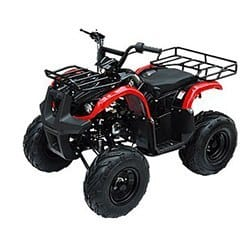 Gas ATV for Kids: //www.kidsatvsale.com/wp-content/uploads/125cc-Mid-Size-Automatic-with-Reverse-Ata-135d-Model.jpg||//www.amazon.com/gp/product/B00A2EH6YC/?tag=kidsatvs-20