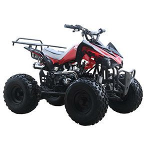 Gas ATV for Kids: //www.kidsatvsale.com/wp-content/uploads/125cc-Sports-ATV-8in-Tires-with-Reverse.jpg||//www.amazon.com/gp/product/B004GJ3JW2/?tag=kidsatvs-20