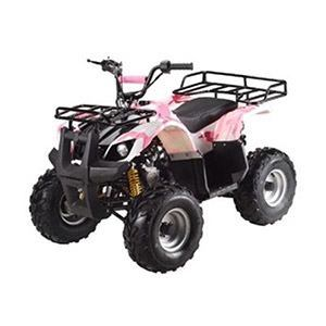 Gas ATV for Kids: //www.kidsatvsale.com/wp-content/uploads/ATA-110D-TaoTao-Kids-Gas-110cc-Utility-ATV-Pink-Camo.jpg||//www.amazon.com/gp/product/B00J4TWYZ2/?tag=kidsatvs-20