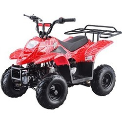 Gas ATV for Kids: //www.kidsatvsale.com/wp-content/uploads/Atv-110b-Fully-Automatic-Atv-110cc-4-Stroke-Engine.jpg||//www.amazon.com/gp/product/B007Z1VJOI/?tag=kidsatvs-20