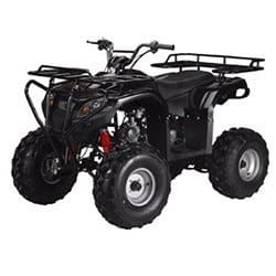 Gas ATV for Kids: //www.kidsatvsale.com/wp-content/uploads/Full-Size-Atv-125cc-Semi-Auto-with-Reverse-Ata-125f1-Model.jpg||//www.amazon.com/gp/product/B00A2EK2YS/?tag=kidsatvs-20