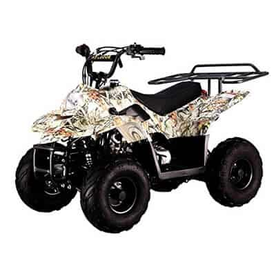 TAO TAO Four-Wheeler 110cc ATV