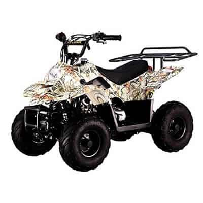TAO TAO Four-Wheeler 110cc ATV