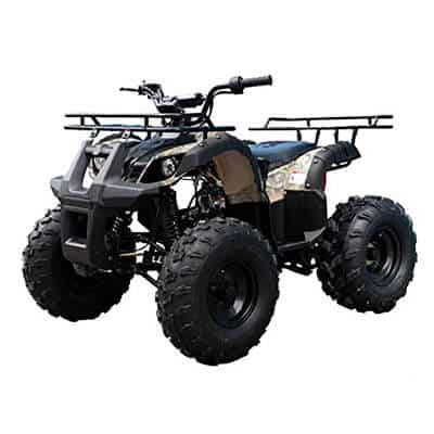 TAO TAO Youth Size 110cc ATV