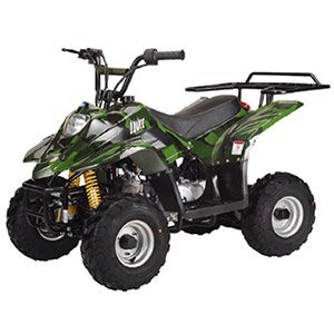 Kids gas powered atvs fuel powered atvs for kids for Motorized atv for toddlers