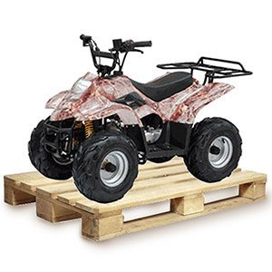 Gas ATV for Kids: //www.kidsatvsale.com/wp-content/uploads/TaoTao-110cc-B3-Kids-ATV-ASSEMBLED.jpg||//www.amazon.com/gp/product/B00N4ZD24E/?tag=kidsatvs-20