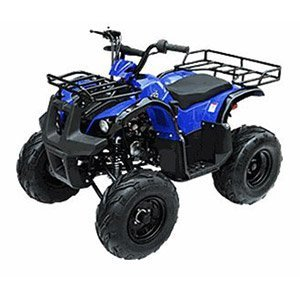 Gas ATV for Kids: //www.kidsatvsale.com/wp-content/uploads/TaoTao-125-D-R-Utility-Kids-ATV-ASSEMBLED.jpg||//www.amazon.com/gp/product/B00MV3HRMI/?tag=kidsatvs-20