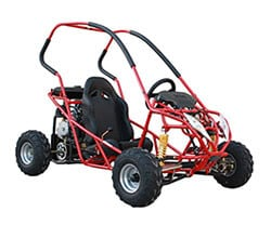 Gas powered go-kart (go-cart)